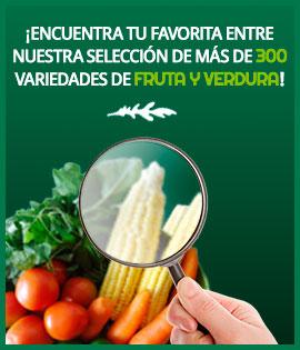 ¡Encuentra tu favorita entre nuestra selección de más de 300 variedades de fruta y verdura!